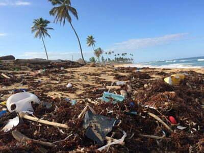 Zero Waste: cómo reducir nuestros residuos